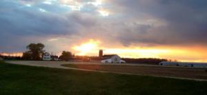 mlf_sunset